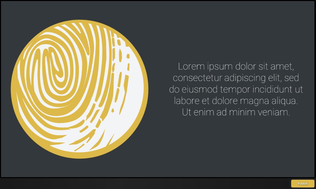 Graphic Widget